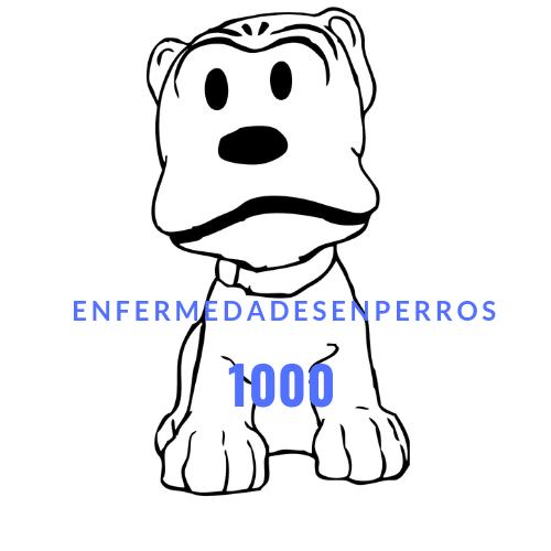 ENFERMEDADESENPERROS.COM
