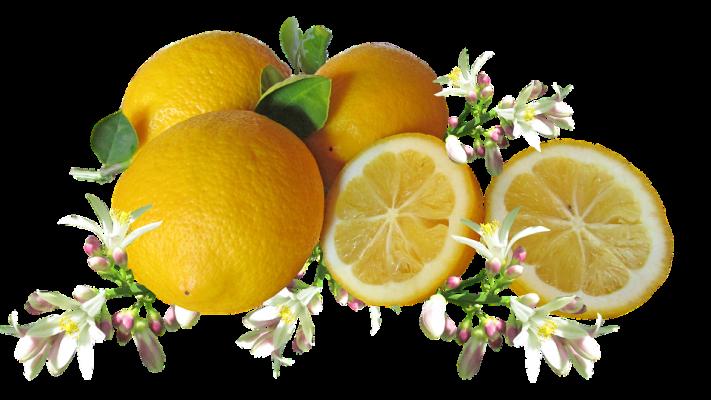 infusión de limones contra las pulgas