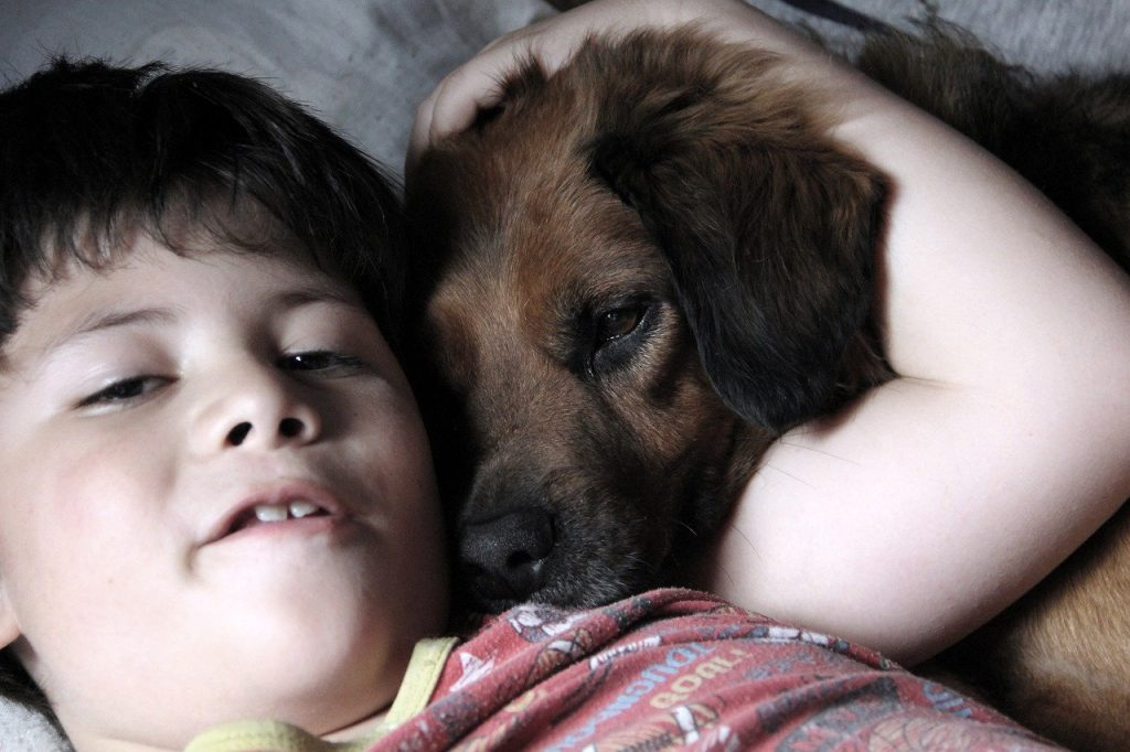niño en cama con perro